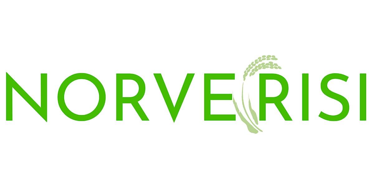 norverisi-web-logo (1)